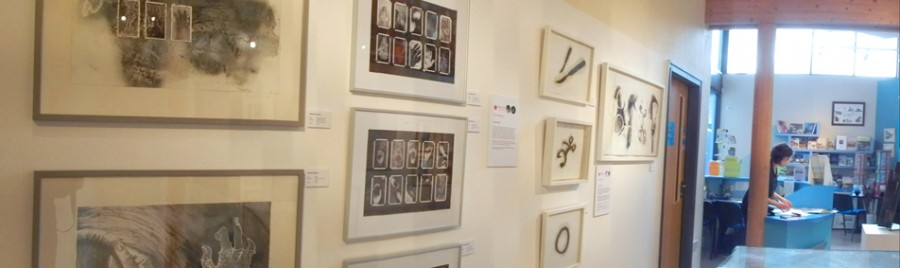 Gallery wall featuring work by Hannah Buckley and Annie Burrows