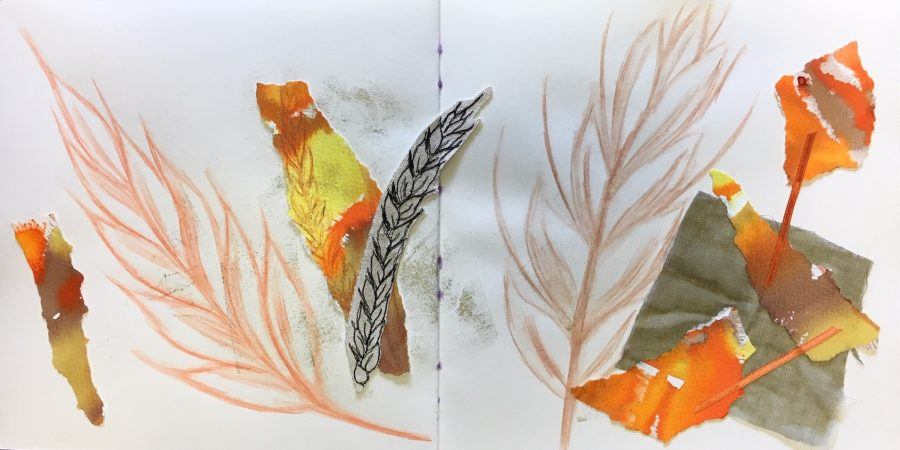 Close up, sketchbook pages by Renate Wilbraham
